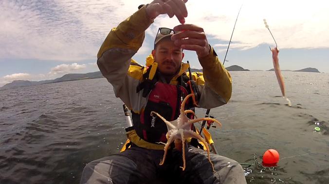 Holding Octopuss